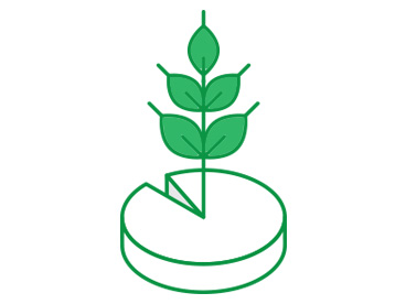 plantproteinrise2
