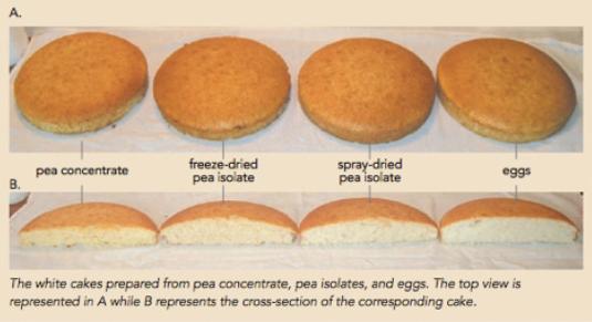 baking-cakeheight1