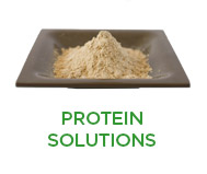 Plant Protein Solutions